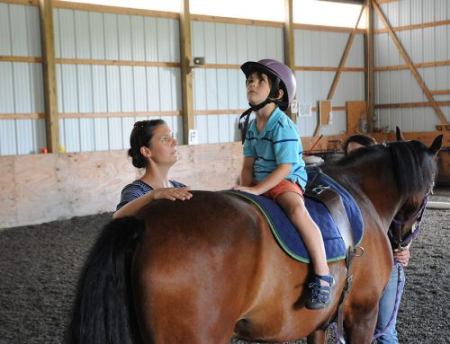 Study Finds Equine-Assisted Therapy Reduces PTS in Youth